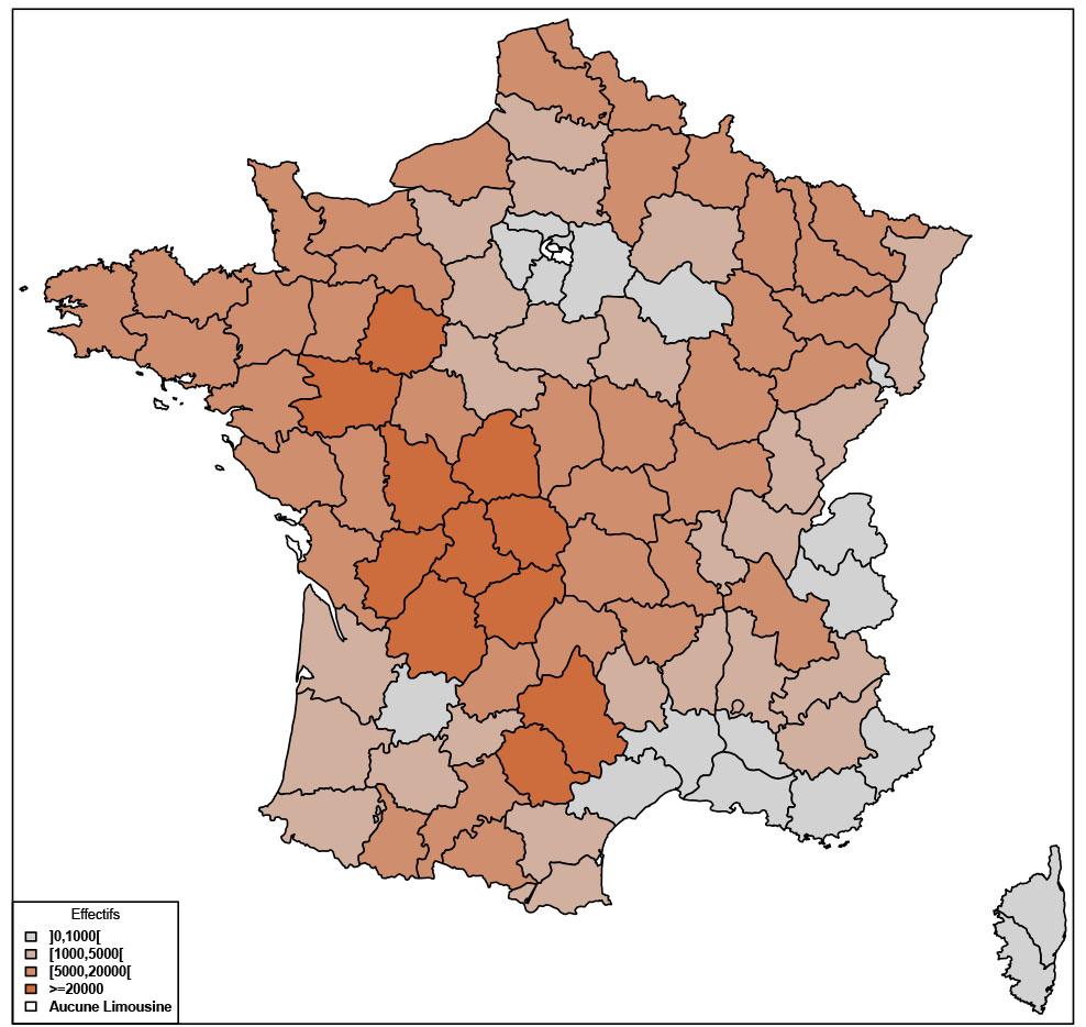 Carte de France décrivant les effectifs de vaches Limousines par département.